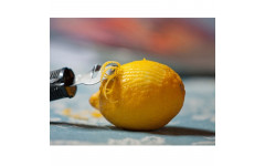 Кухонный нож Victorinox Lemon Zester 5.3503
