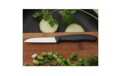 Кухонный нож Victorinox SwissClassic Paring 6.7403